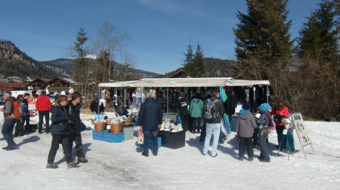 Schlittenhunderennen-Wallgau-08-03-2015 (2)