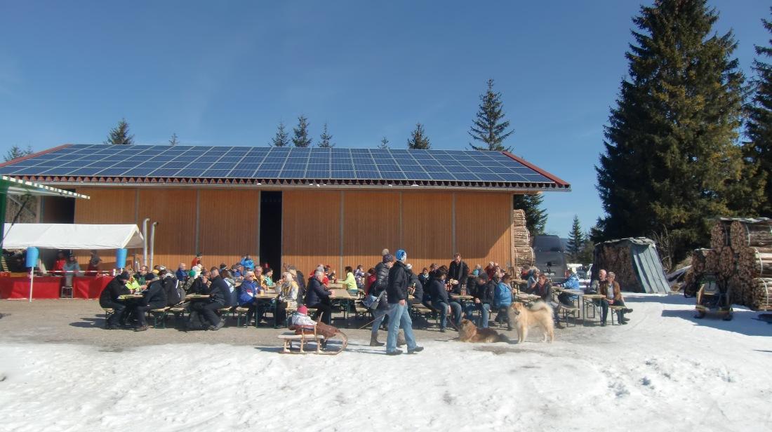 Schlittenhunderennen-Wallgau-08-03-2015 (3)