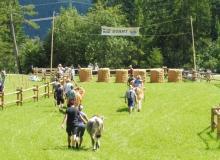 Ochsenrennen-2016-07-30-zweites-Training (18)