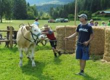 Ochsenrennen-2016-07-30-zweites-Training (27)