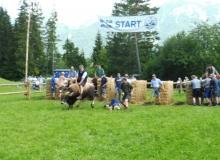Ochsenrennen-2016-07-30-zweites-Training (41)