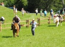 Ochsenrennen-2016-07-30-zweites-Training (70)