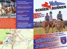 Flyer Ochsenrennen Wallgau Seite 1
