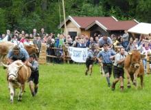 2016-08-06-Ochsenrennen-Wallgau (110)