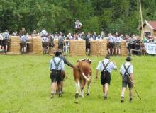 2016-08-06-Ochsenrennen-Wallgau (115)