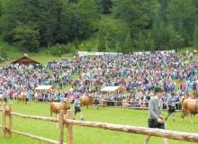2016-08-06-Ochsenrennen-Wallgau (21)
