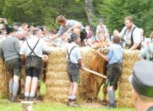 2016-08-06-Ochsenrennen-Wallgau (24)