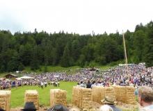 2016-08-06-Ochsenrennen-Wallgau (37)