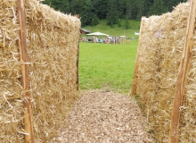 2016-08-06-Ochsenrennen-Wallgau (5)