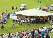 2016-08-06-Ochsenrennen-Wallgau (55)