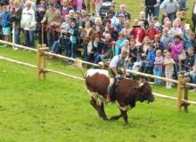 2016-08-06-Ochsenrennen-Wallgau (62)