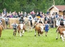 2016-08-06-Ochsenrennen-Wallgau (97)