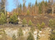 01.01.2017 nach dem Brand am Krepelschroffen bei Wallgau