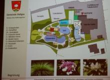 Dorferneuerung Wallgau: Wellnessgarten, Begrünung