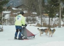 Schlittenhunderennen am 24. und 25.02.2018 in Wallgau. Mehr Hunde wären besser.