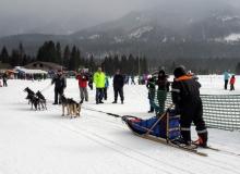 Schlittenhunderennen am 24. und 25.02.2018 in Wallgau. Start- und Zielbereich am Hofgarten