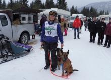 Schlittenhunderennen am 24. und 25.02.2018 in Wallgau. Zwei Hunde und ihre Herrin. Startnummer 17 sehen wir später noch auf der Strecke.