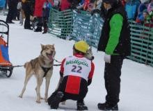 Schlittenhunderennen am 24. und 25.02.2018 in Wallgau. Der Hundeflüsterer aus Ungarn.