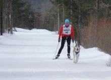Schlittenhunderennen am 24. und 25.02.2018 in Wallgau. Nicht jeder kann gewinnen. Der Weg ist das Ziel.