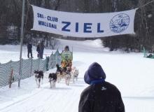 Schlittenhunderennen am 24. und 25.02.2018 in Wallgau. Geschafft