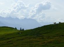 Simetsberg am Loos vor Karwendelgebirge