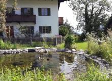 2016-07-29-Teich-Wallgau (1)