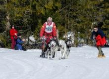 Schlittenhunderennen Wallgau 2019 (48)