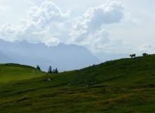 Ausblick auf das Karwendelgebirge