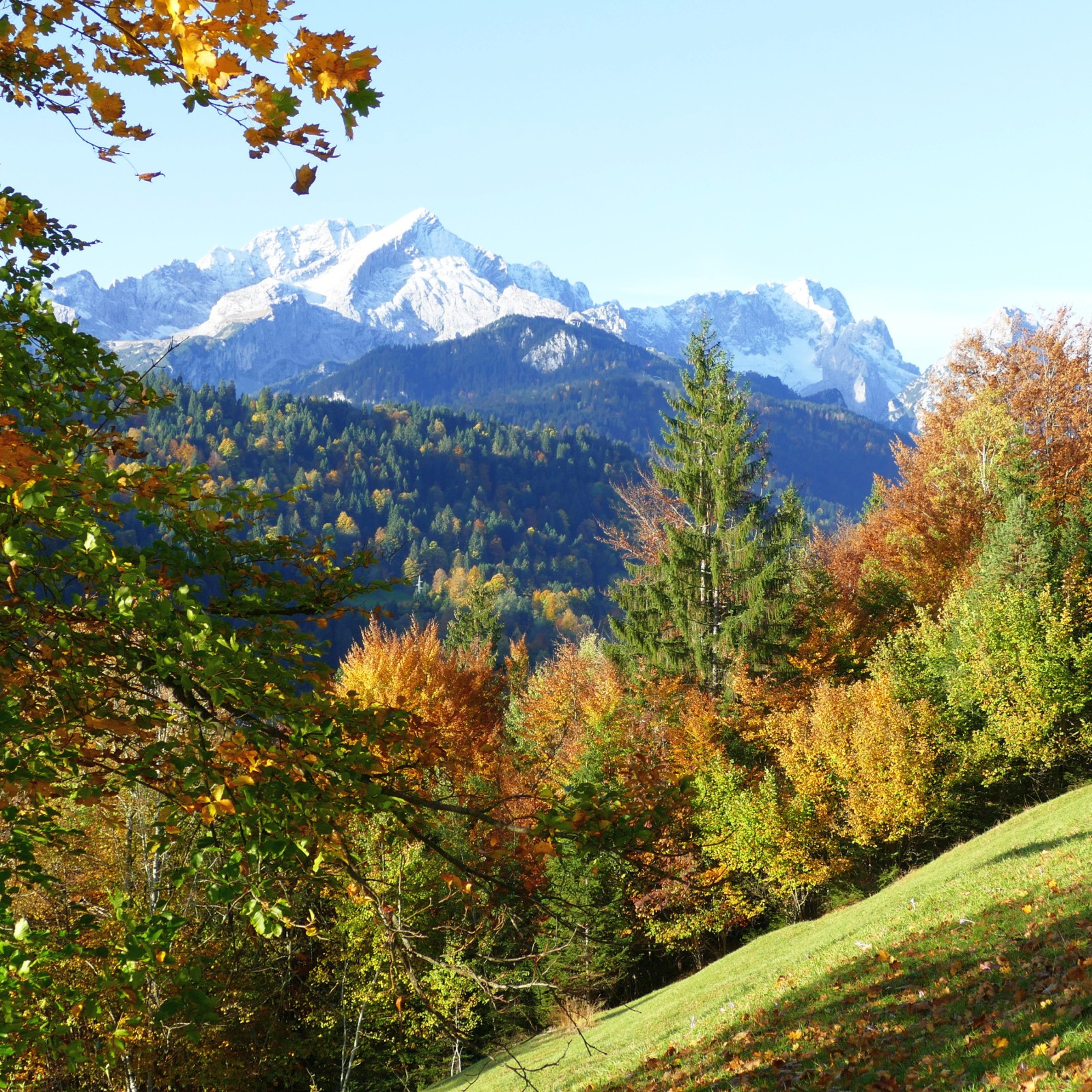 Aussicht vom alten Gstoag auf die Alpspitze