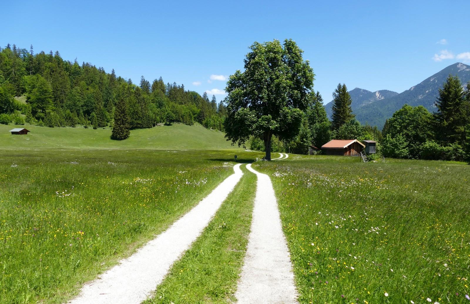Weg nach Wallgau. Way to Wallgau